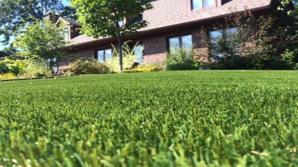 Faire la différence entre pelouse synthétique et naturelle